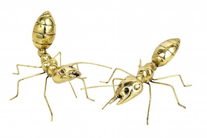 Mieren groot